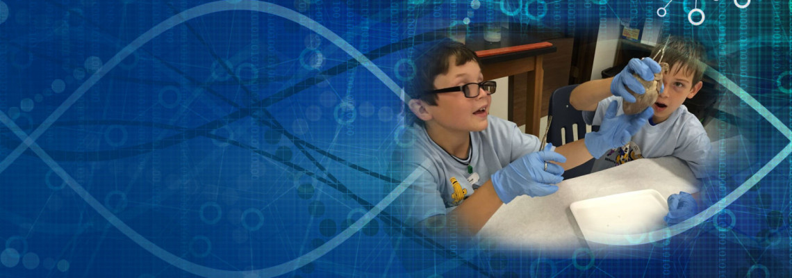 Houston After School Science & Technology Programs